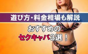 新宿にあるおすすめのセクキャバ3選!遊び方・料金相場も解説